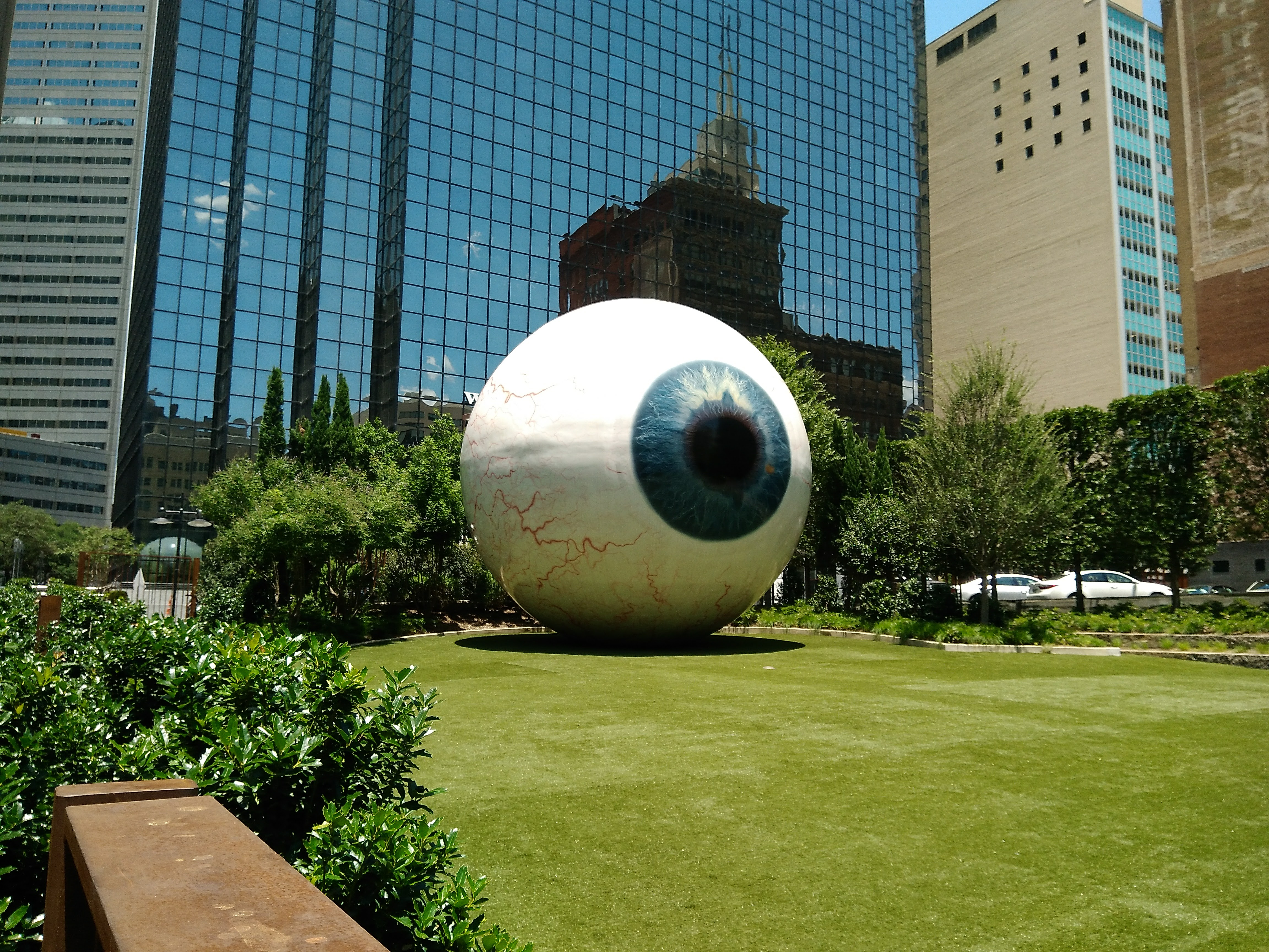 An eyeball of alarming size